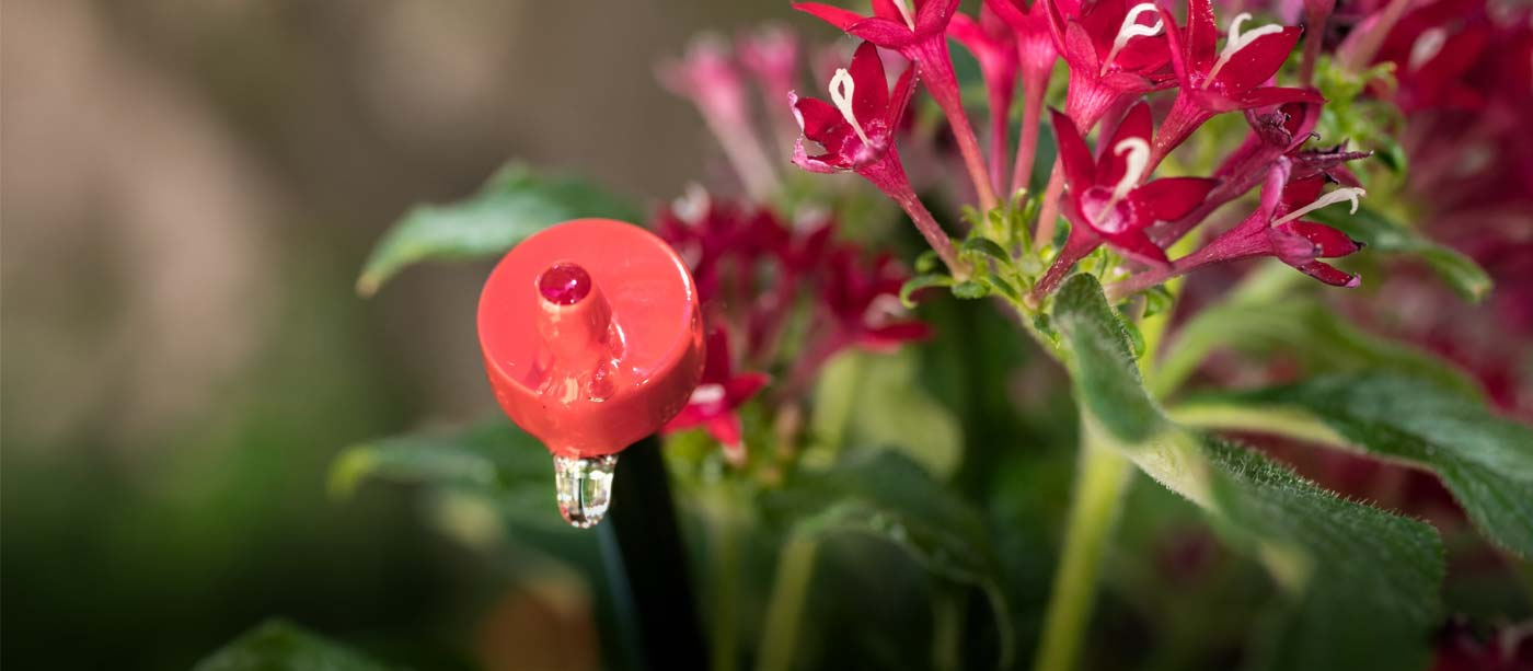 Free Water Smart Class: Drip Irrigation