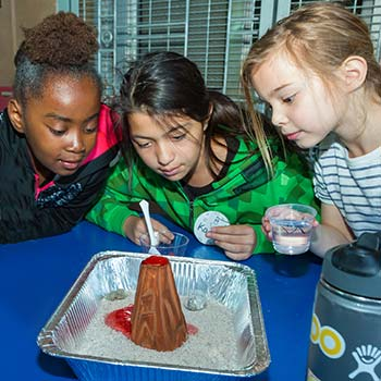 Young girls examine a science experiment.