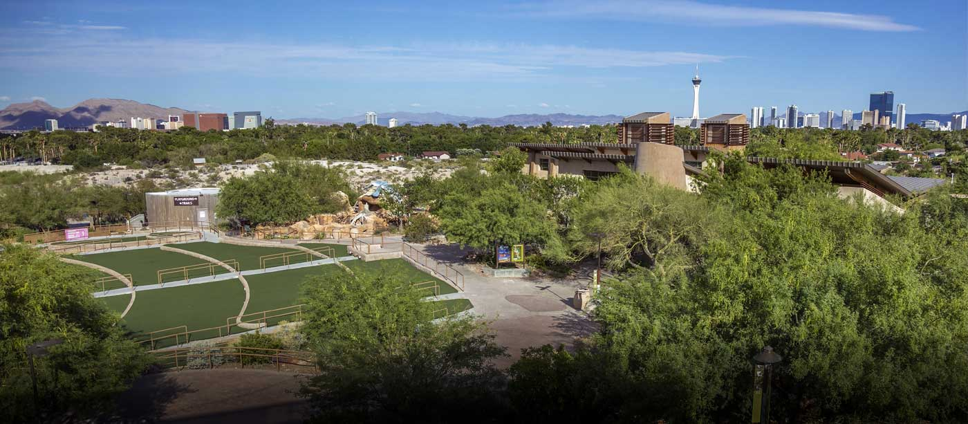 View of Las Vegas skyline as seen from Divine Cafe at the Springs Preserve