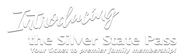 Introducing the Silver State Pass, your ticket to premier family membership.