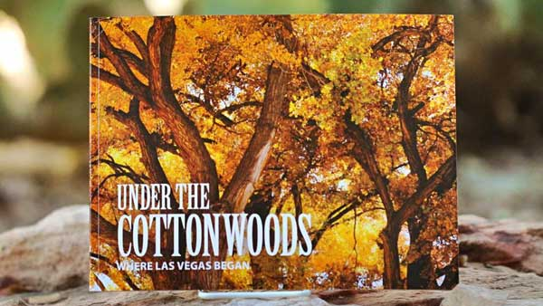Under the Cottonwoods book